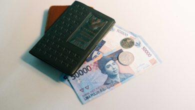 Travel money 1 390x220 - كيف تقوم برحلة اقتصادية